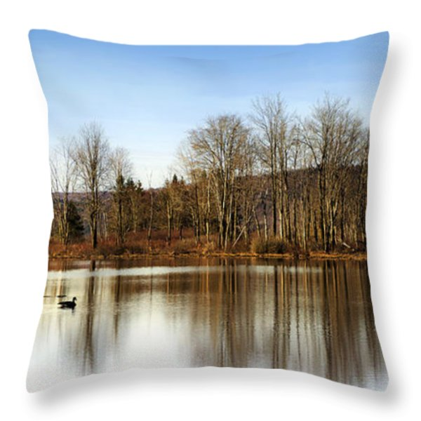 Reflections On Golden Pond Throw Pillow by Christina Rollo