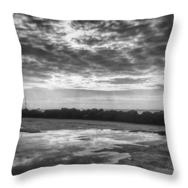 Reflections Throw Pillow by Taylan Soyturk