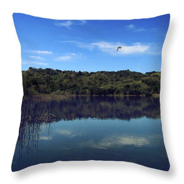 Regardless of the Blues Throw Pillow by Laurie Search