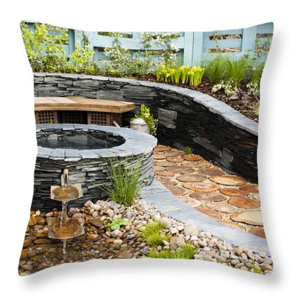 Regeneration Throw Pillow by Anne Gilbert