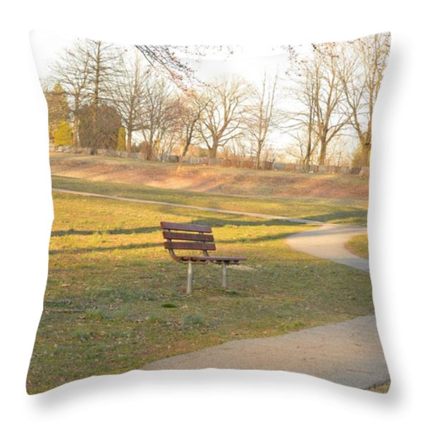 Relaxing  Evening Throw Pillow by Sonali Gangane