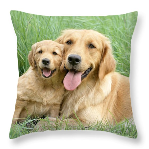 Relaxing Retrievers Throw Pillow by Greg Cuddiford