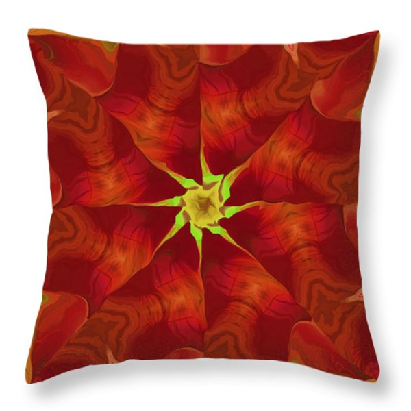 Release of The Heart Throw Pillow by Deborah Benoit