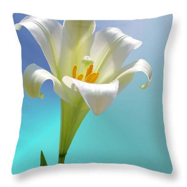 Remembrance Throw Pillow by Kristin Elmquist