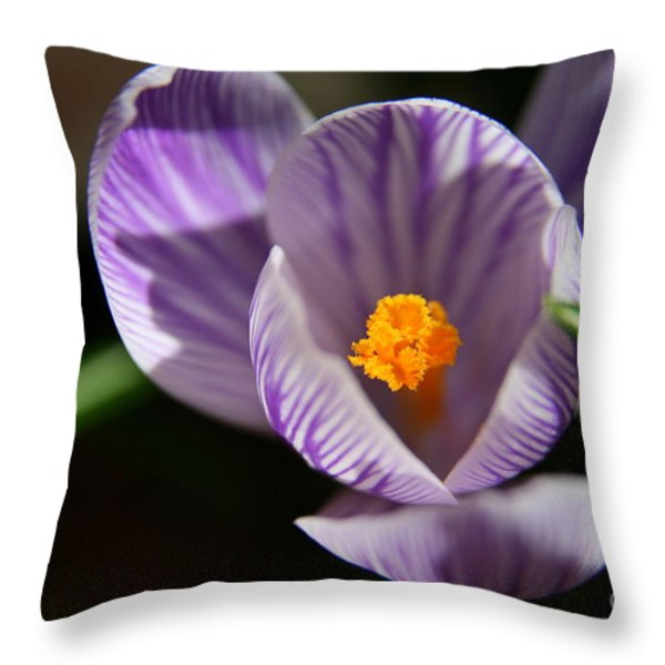 Remembrance Throw Pillow by Neal  Eslinger
