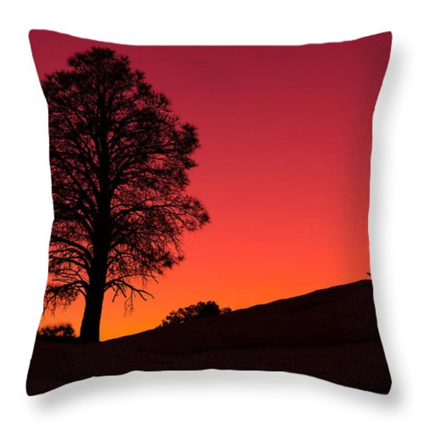 Reminiscing Throw Pillow by Chad Dutson