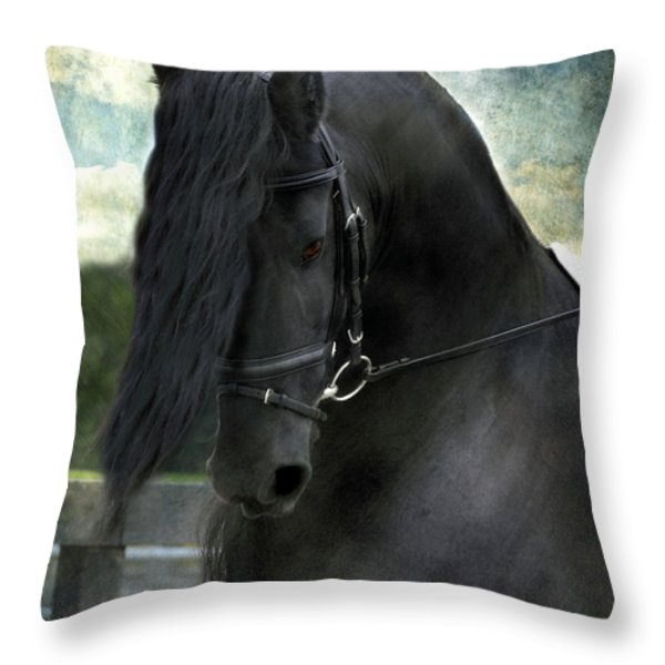 Remme Throw Pillow by Fran J Scott