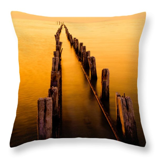 Remnants Throw Pillow by Chad Dutson