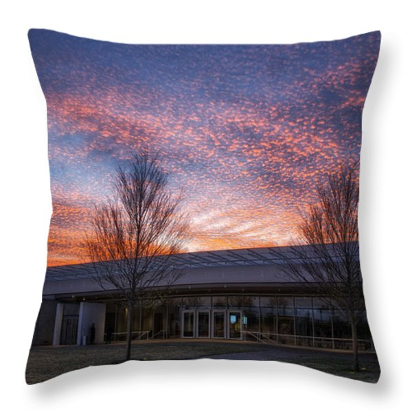Renzo Piano Pavilion Throw Pillow by Joan Carroll