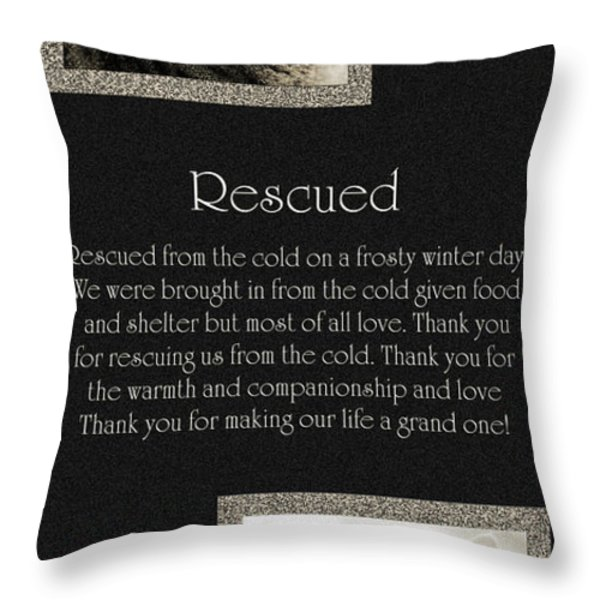 Rescued Throw Pillow by Andee Design