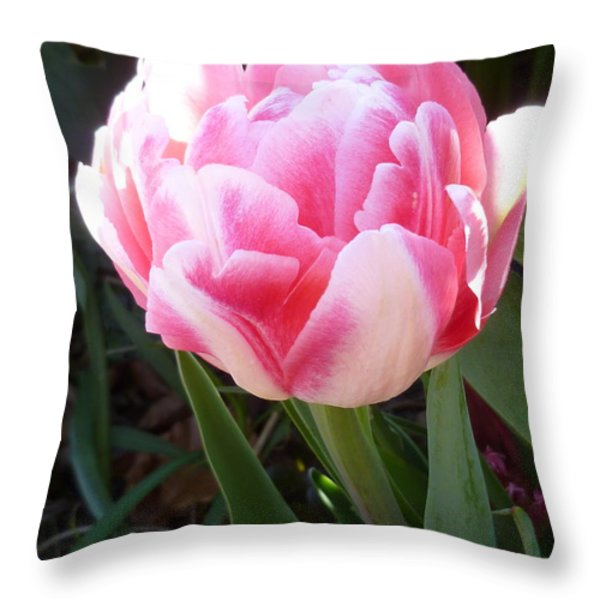 Resplendent Cherry Pink Tulip Throw Pillow by Lingfai Leung