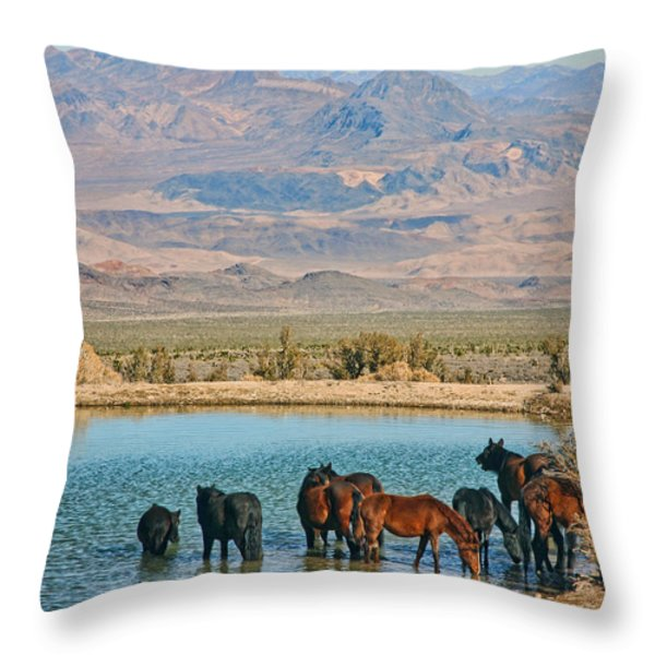 Rest Stop Throw Pillow by Tammy Espino