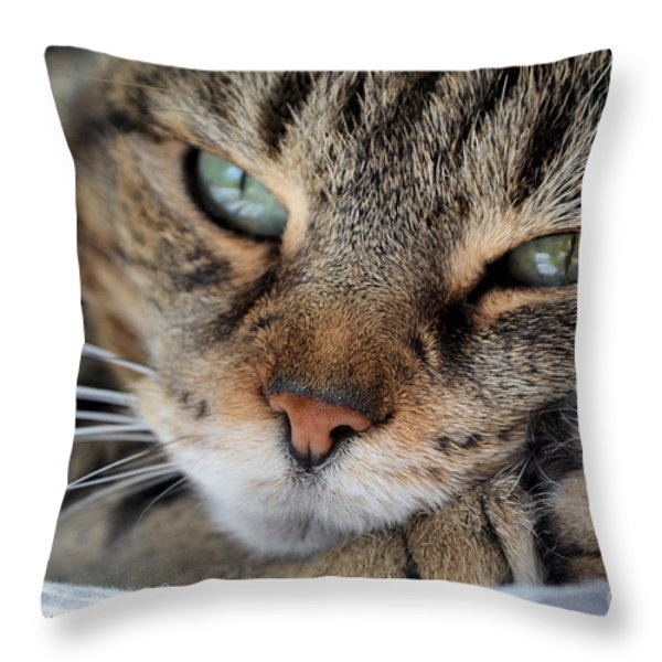 Rest Throw Pillow by Susan Smith