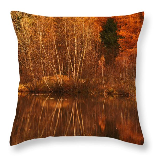 Restes D'automne Throw Pillow by Aimelle