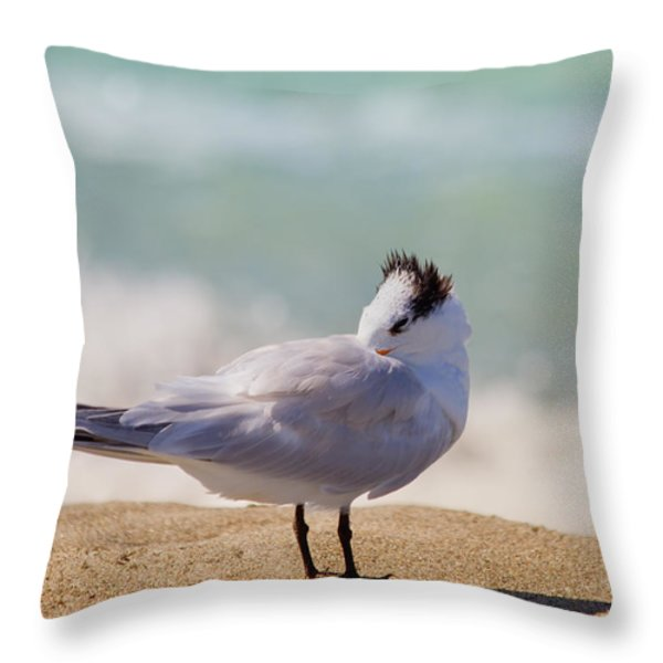 Resting at the Beach Throw Pillow by Kim Hojnacki