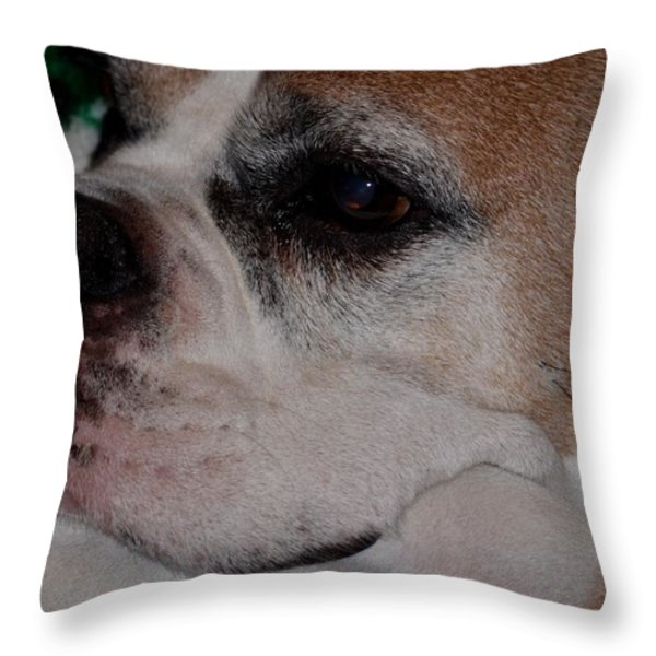 Retired Throw Pillow by Maria Urso