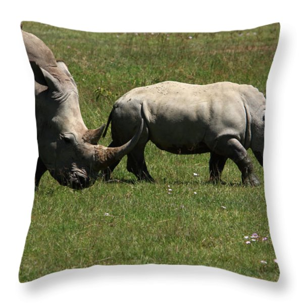 Rhinoceros Throw Pillow by Aidan Moran