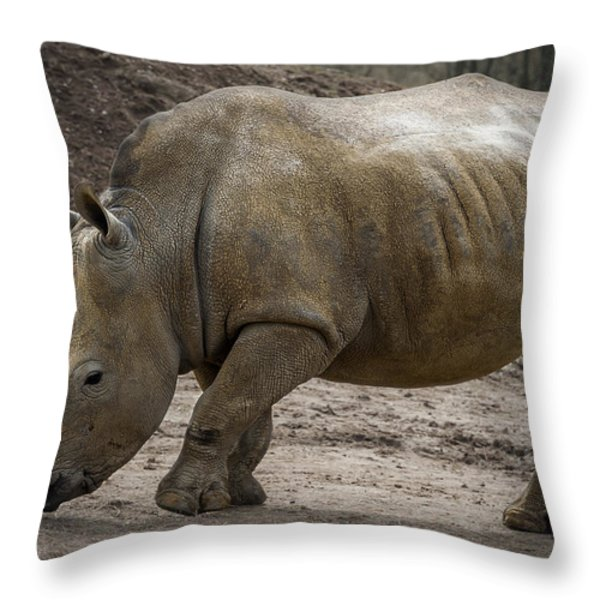 Rhinoceros Throw Pillow by Svetlana Sewell
