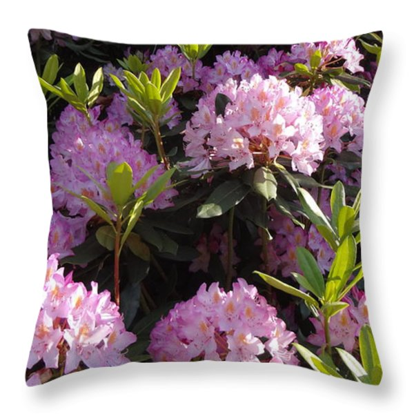 Rhododendron Throw Pillow by John Baumgartner