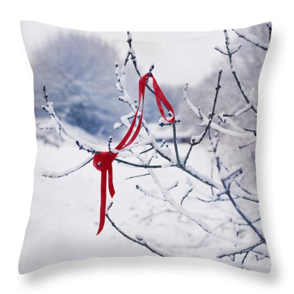 Ribbon In Tree Throw Pillow by Amanda And Christopher Elwell