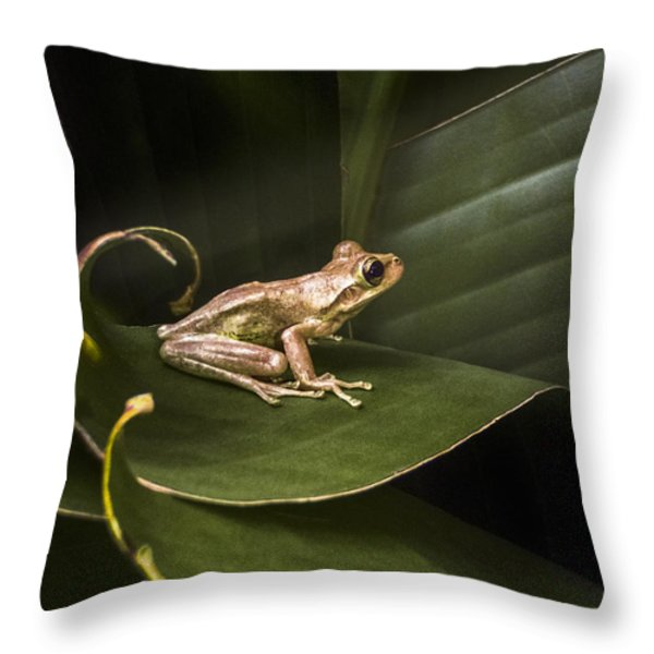 Riding the Wave Throw Pillow by Debra and Dave Vanderlaan