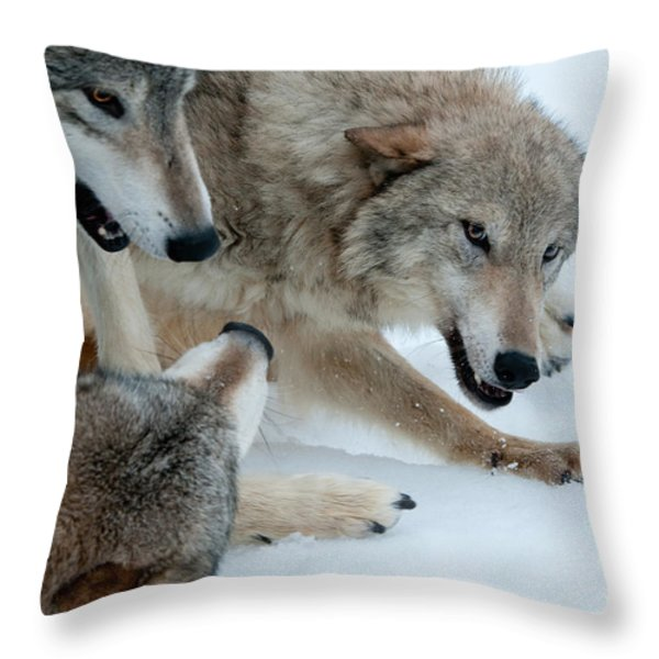 Right of Passage Throw Pillow by Sandra Bronstein