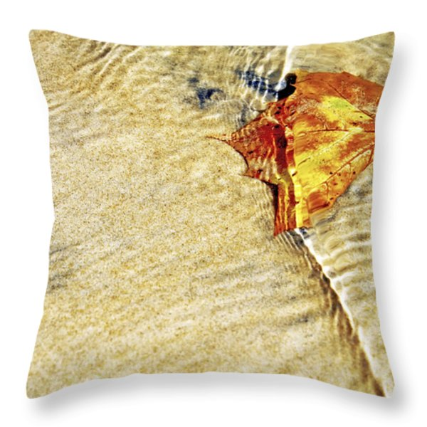 Ripple In Time Throw Pillow by Jason Politte