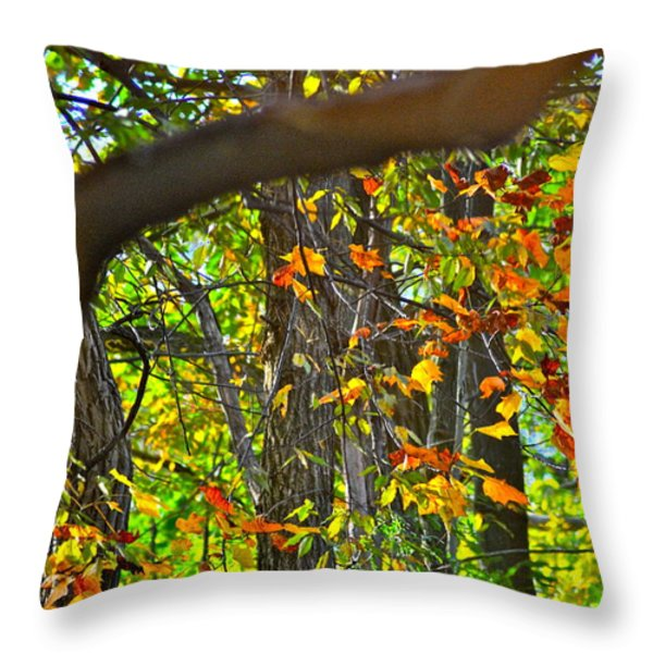 Ripples Tell The Story Throw Pillow by Frozen in Time Fine Art Photography