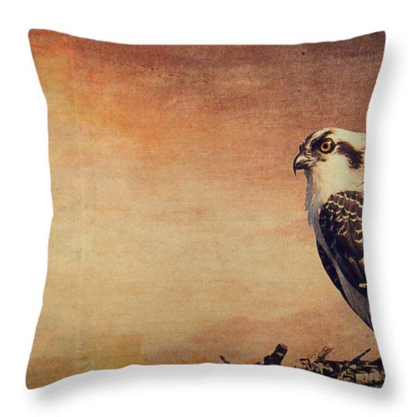 Rising Sun Throw Pillow by Edward Fielding