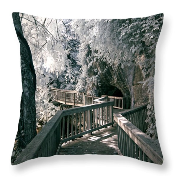 River Boardwalk Throw Pillow by Paul W Faust -  Impressions of Light