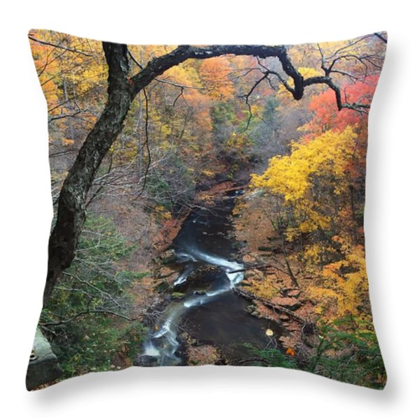 River Gorge Throw Pillow by Daniel Behm