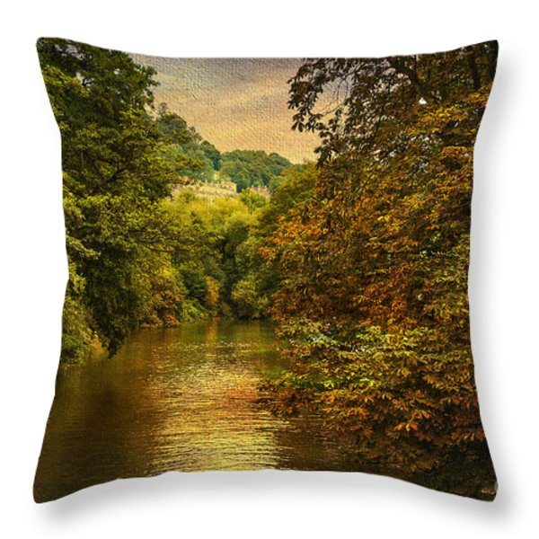 River Path Throw Pillow by Svetlana Sewell