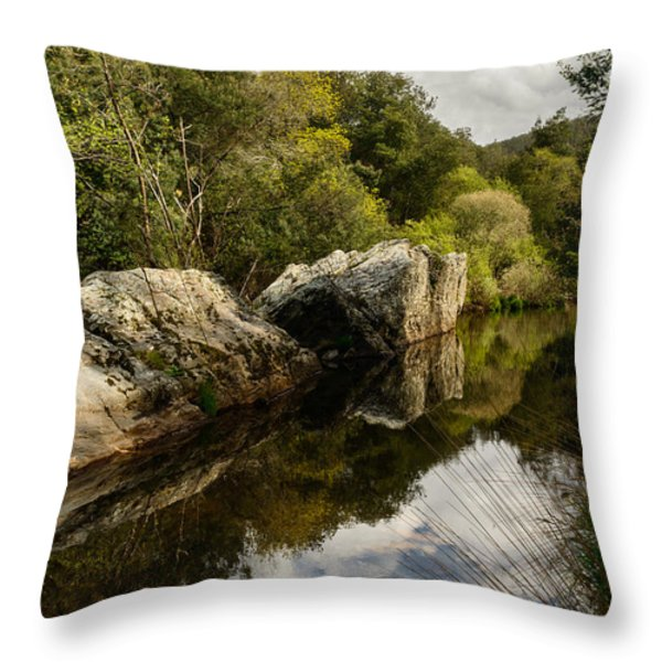 River Reflections II Throw Pillow by Marco Oliveira