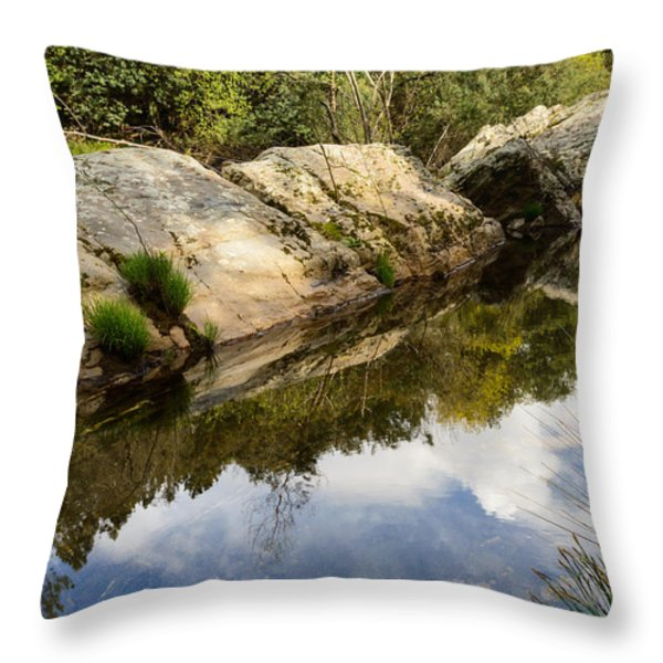 River Reflections III Throw Pillow by Marco Oliveira