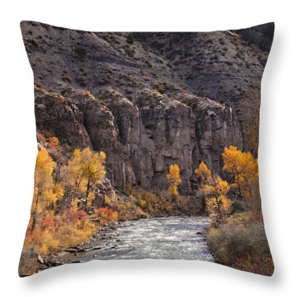 River Through The Aspen Throw Pillow by David Kehrli