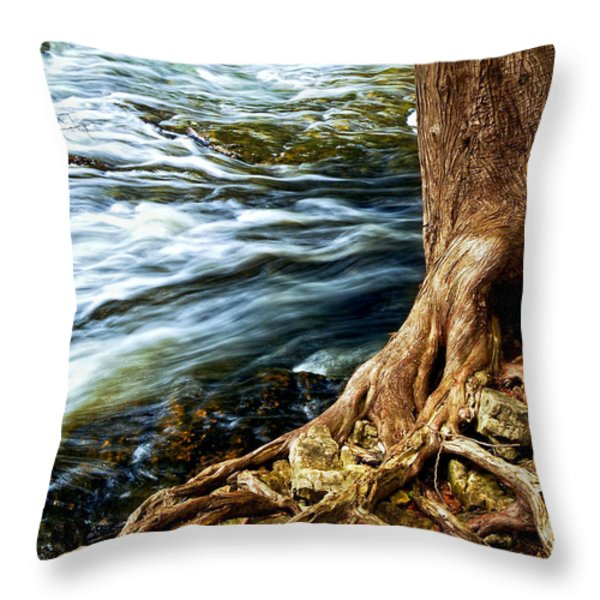 River Through Woods Throw Pillow by Elena Elisseeva