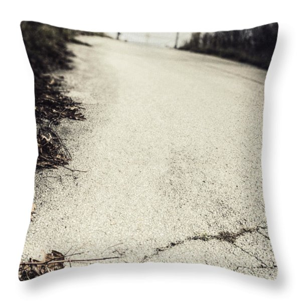 Road Less Traveled Throw Pillow by Margie Hurwich