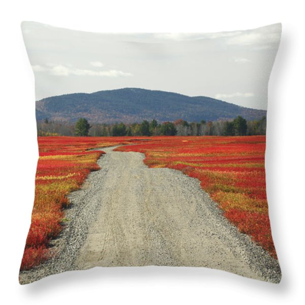 Road Through Autumn Blueberry Maine Throw Pillow by Scott Leslie