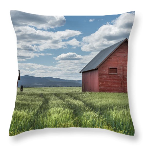 Road To Nowhere Throw Pillow by Sandra Bronstein