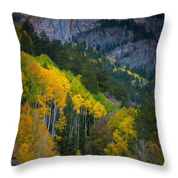 Road To Silver Mountain Throw Pillow by Inge Johnsson
