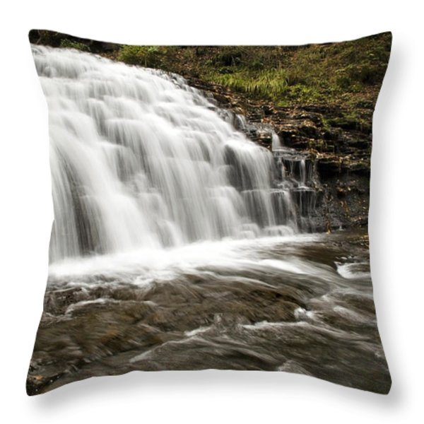 Roaring Falls Salt Springs Throw Pillow by Christina Rollo