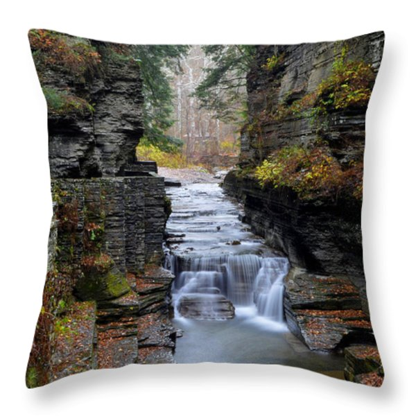 Robert Treman State Park Throw Pillow by Frozen in Time Fine Art Photography