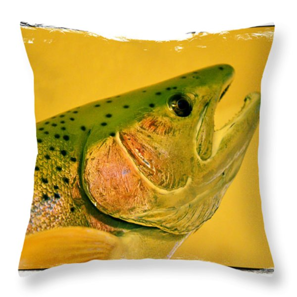Rock Creek Rainbow Throw Pillow by Lauren Hunter