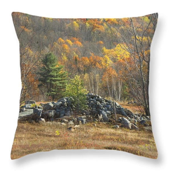 Rock Pile In Maine Blueberry Field Throw Pillow by Keith Webber Jr