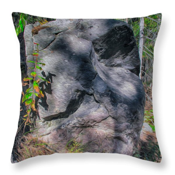 Rocky Ancestor Throw Pillow by Omaste Witkowski