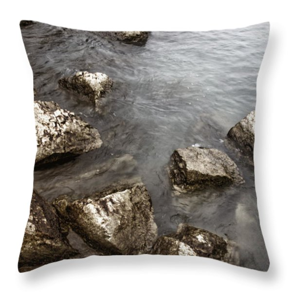 Rocky Throw Pillow by Margie Hurwich