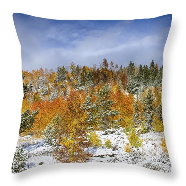 Rocky Mountain Autumn Storm Throw Pillow by James BO  Insogna