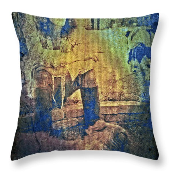 Roger Daltrey Throw Pillow by Absinthe Art By Michelle LeAnn Scott