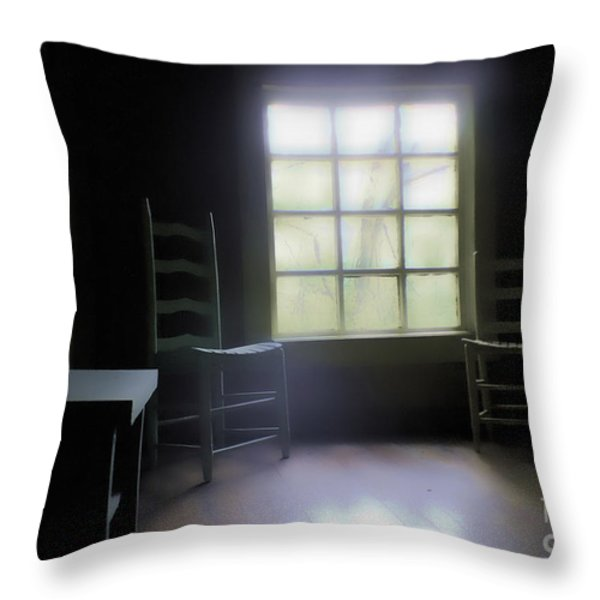 Room with a View Throw Pillow by Cris Hayes