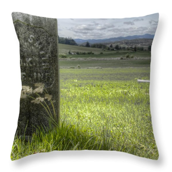 Room with a View Throw Pillow by Jean Noren